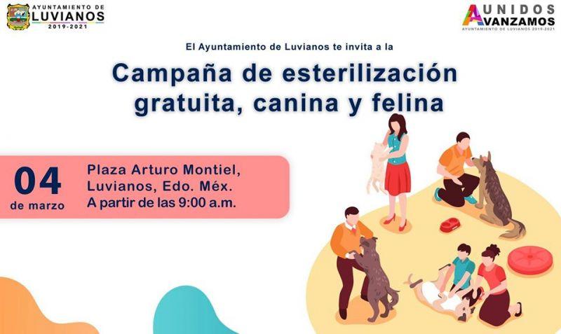 Invitación Campaña de Esterilización Felina y Canina