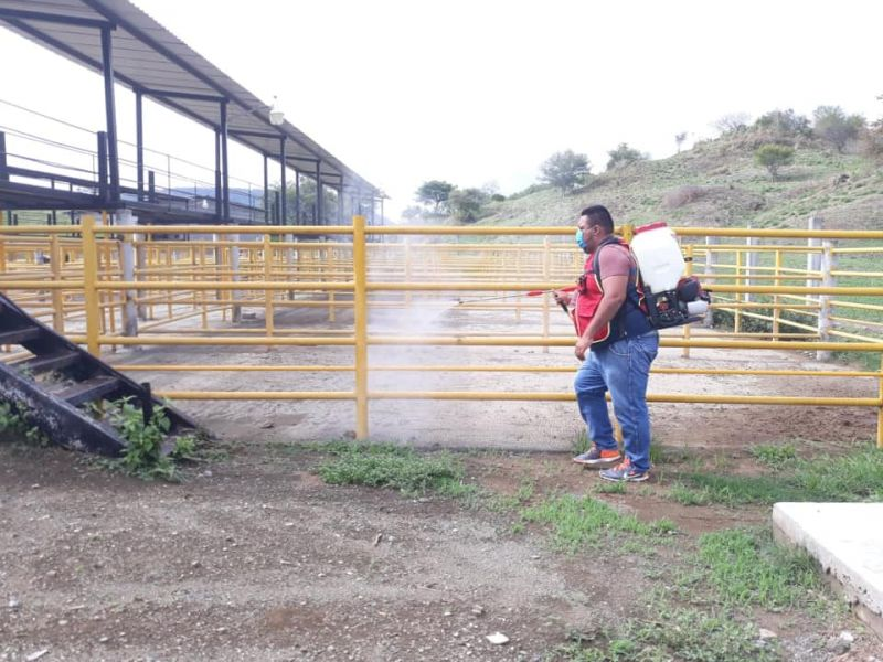 Sanitización de la Bascula Ganadera y Calles Concurridas de Nuestro Municipio.