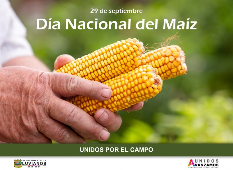 Día del Maíz en México