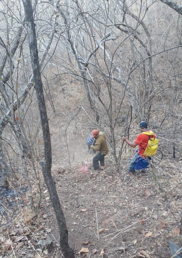Sofocamiento de Incendio Forestal